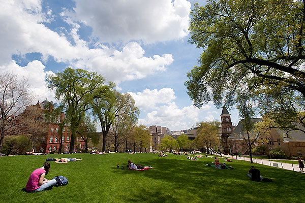 Student studying on the green lawn of Bascom Hill